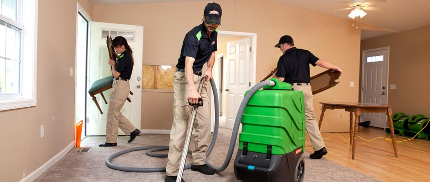 Whitemarsh, PA cleaning services